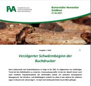 Borkenkäfer Newsletter FVA